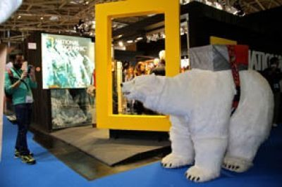oso polar national geographic