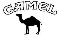 camel logo marca